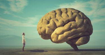 Jak konečně dodržet každoroční novoroční předsevzetí? Seznamte se se svým mozkem!